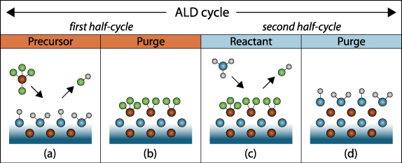 Significant Emergence In The Atomic Layer Deposition