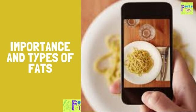 Importance and Types of Fats 1