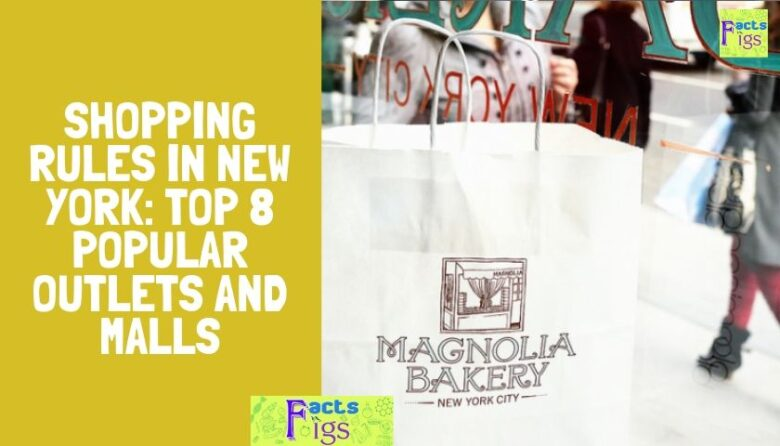 Shopping Rules in New York: TOP 8 Popular Outlets and Malls