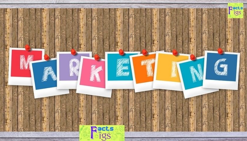 5 Low Budget Marketing Ideas for Small Businesses