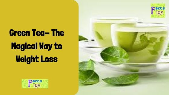 Green Tea- The Magical Way to Weight Loss 1