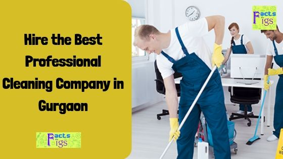 Hire the Best Professional Cleaning Company in Gurgaon