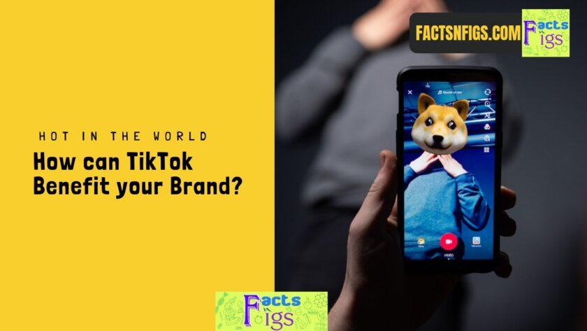 factsnfigs.com