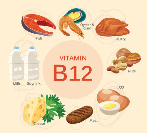 What Are The Best Benefits Of Vitamin B12?