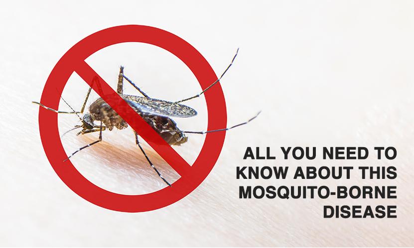 World Malaria Day 2020